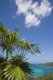 Hidden beach. St. Thomas Virgin Islands view of ocean , beach. green palm, trees. magens's bay stock photo