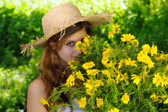 Hidden behind the daisies Royalty Free Stock Image