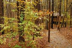 Hidden Cabin Stock Photos