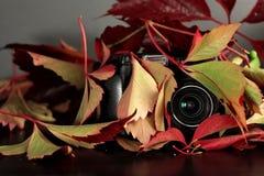 Hidden Camera Royalty Free Stock Image