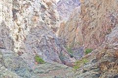 Hidden Canyon Stock Images
