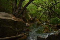 Hidden Cascade. In Bolsón, Patagonia, Argentina in a sunny day Royalty Free Stock Photos