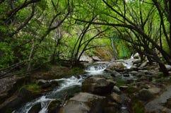 Hidden Cascade Stock Image