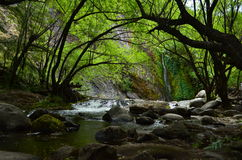 Hidden Cascade. In a dark place full of trees in Patagonia, Argentina Stock Photography