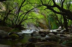 Hidden Cascade Stock Photography