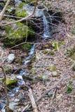 Hidden Cascading Waterfall. A hidden cascading waterfall located in the Blue Ridge Mountains in Roanoke County, Virginia, USA stock photos