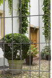 Hidden courtyard 4 Stock Images