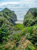 Life is a private beach... Hidden cove in the Tropical Rain Forest along the West Coast of New Zealand`s South Island royalty free stock photos