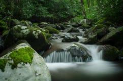 Hidden Creek, Blue Ridge Mountains Stock Photo