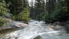 Hidden Creek, Glacier National Park. Royalty Free Stock Photos