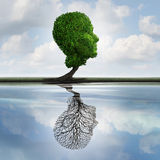 Hidden Depression. Concept and private feelings symbol as a tree with leaves shaped as a human head with a reflection on water with an empty plant as an Royalty Free Stock Photography