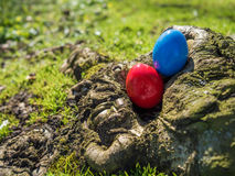 Hidden easter eggs. Two hidden easter eggs in tree hole Royalty Free Stock Photo