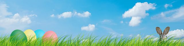Hidden easter rabbit and easter eggs in a meadow with blue sky stock images