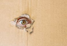 Hidden eye watching through hole in cardboard paper Stock Images