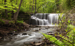 Hidden Falls. In Nerstrand/Big Woods State Park in Minnesota Royalty Free Stock Image