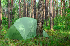 Hidden in forest pitched tent - example of stealth camping Stock Image