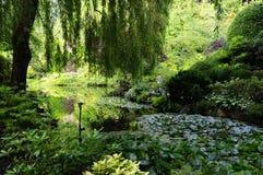 Hidden Garden Royalty Free Stock Photo