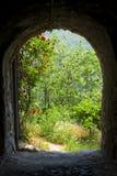 Hidden garden stock photo
