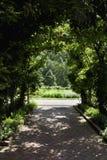 Hidden Garden. A garden view hidden by a heavy growth of overhead greenery Stock Photo