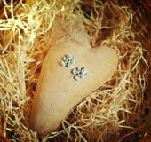 The hidden heart Royalty Free Stock Photos