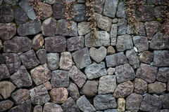 Hidden heart royalty free stock image