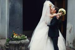 Hidden - a kiss of newlyweds behind a veil Stock Photo
