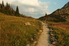 Free Hidden Lake Nature Trail At Logan Pass Royalty Free Stock Images - 16074459