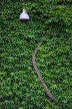 hidden lamp Στοκ Εικόνα