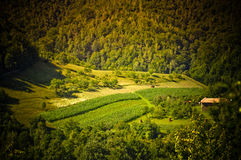 Hidden Meadow Orastie Hunedoara Romania. A very nice meadow that you can see only after climbing on a hill, picture taken in Orastie, Hunedoara County, Romania royalty free stock image