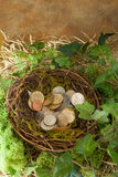 Hidden money Royalty Free Stock Images