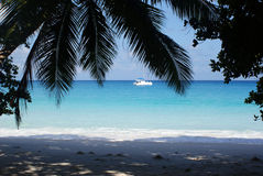 Hidden paradise. A huge bay in Seychelles Royalty Free Stock Image