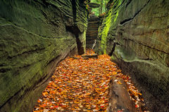 Free Hidden Passageway Stock Image - 45770851