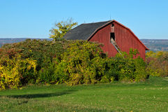 Hidden Red Barn Royalty Free Stock Photography