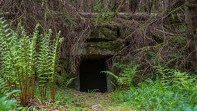 Hidden ruin stone entrance in forest stock images