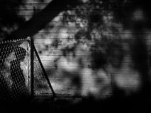Hidden Shadow. Shadow of a boy hidden in other shadows Royalty Free Stock Images