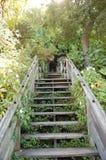 Hidden Stairway on Telegraph Hill. A stairway to a hidden neighborhood on Telegraph Hill in Northern California Stock Photo