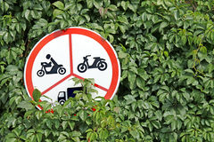 Hidden traffic sign. Traffic sign hidden among green plant leaves Stock Photos