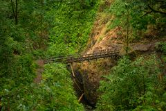 Hidden Trail Bridge. Trail bridge tucked away in Columbia Gorge Stock Image