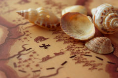 Hidden treasure map and shells Royalty Free Stock Photos