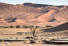 Hidden Vlei, Namibia. Hidden Vlei in the southern part of the Namib Desert, in the Namib-Naukluft National Park of Namibia Royalty Free Stock Photos