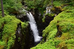Hidden waterfall in the green. Waterfall between green moss covered cliffs, Norway Royalty Free Stock Photos