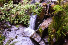 Hidden waterfall in Olinda National Park royalty free stock images