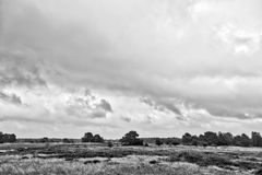 Hiddensee heath with cloudscape Stock Image