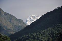 Hidding雪山在尼泊尔 库存图片