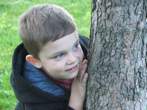 Hide and Seek. Young boy peeking playfully around a tree trunk royalty free stock images