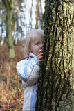 Hide and seek Royalty Free Stock Images