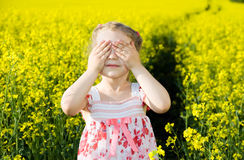 Hide-and-seek. Little girl playing hide and seek in the yellow field Royalty Free Stock Images