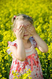 Hide-and-seek in field. Little girl playing hide and seek in yellow field Stock Photography