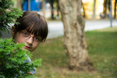 Hide and seek Royalty Free Stock Photos