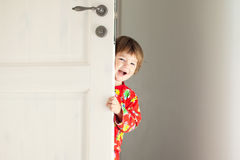 Hide-and-seek player Royalty Free Stock Images